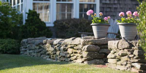 Dry Laid Stone Wall with Flowers