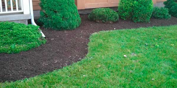 Mulch Edging