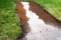 Drainage Issues – The Problem