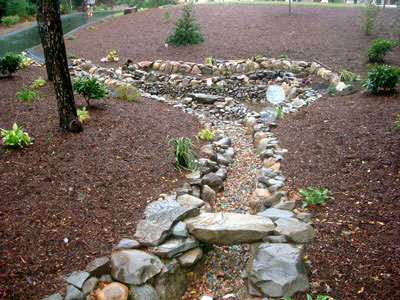 Dry Retention Pond Mike Stacy Landscaping